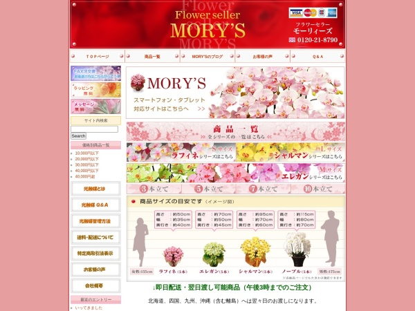Screenshot of www.f-morys.com