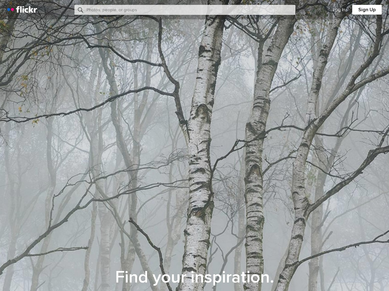 Screenshot of www.flickr.com