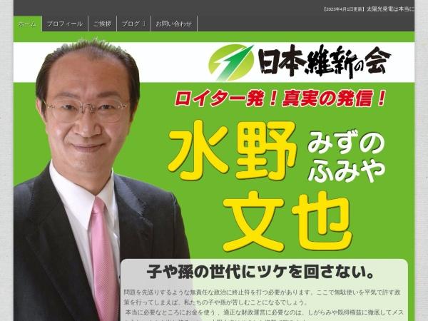 Screenshot of www.fmizuno.jp