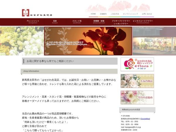 Screenshot of www.fs-h.co.jp