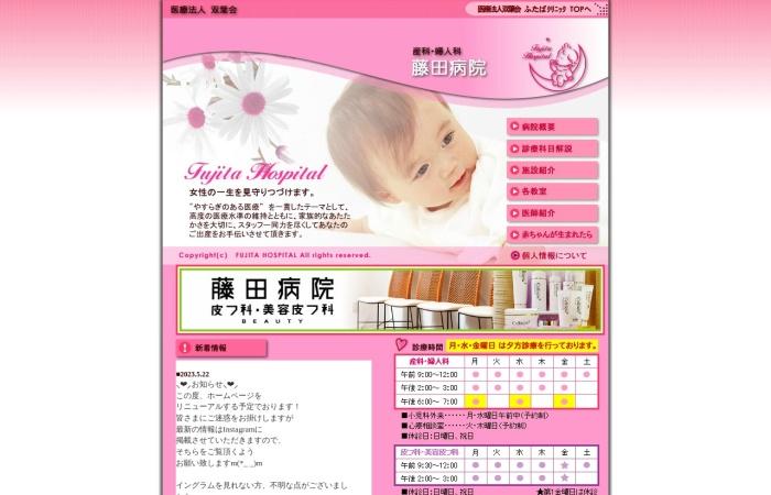 Screenshot of www.fujita-hp.com