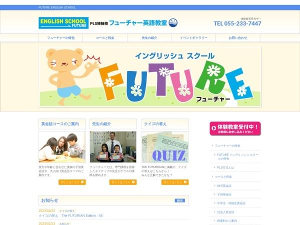 Screenshot of www.future-e-s.com