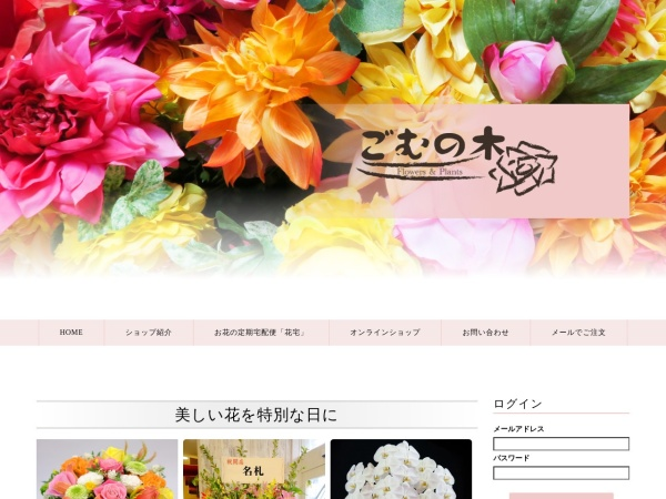 Screenshot of www.gomunoki.com