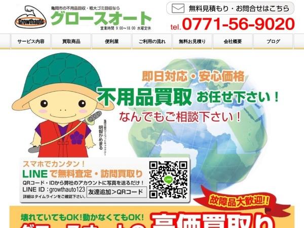Screenshot of www.growthauto.com