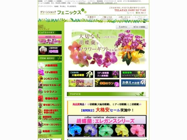 Screenshot of www.gs-phoenix.com