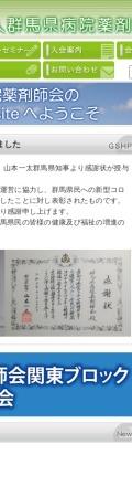 Screenshot of www.gunma-byoyaku.gr.jp