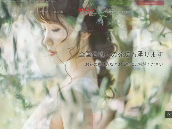 Screenshot of www.hana-saitou.com