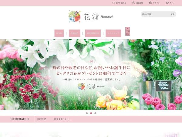 Screenshot of www.hanasei.com