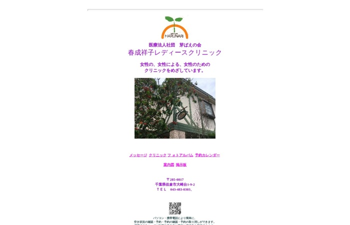 Screenshot of www.harunari.com