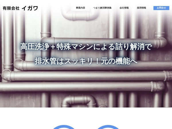 Screenshot of www.igawa-inc.co.jp