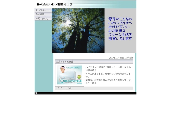 Screenshot of www.iwaidenki.com