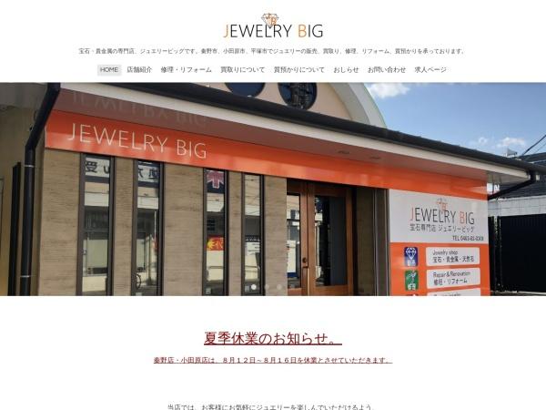 Screenshot of www.jewelrybig.net