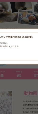 Screenshot of www.johyama.com