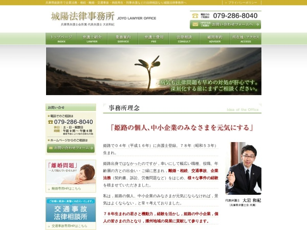 Screenshot of www.joyo-law.com