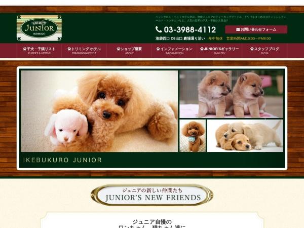Screenshot of www.junior1.com