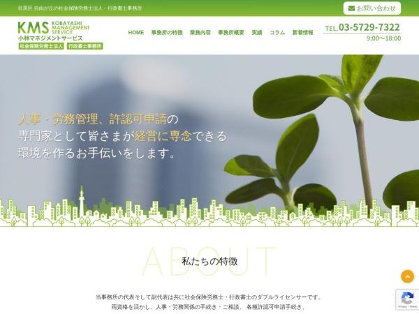 Screenshot of www.k-m-s.biz
