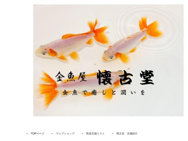 Screenshot of www.kaikodou.com