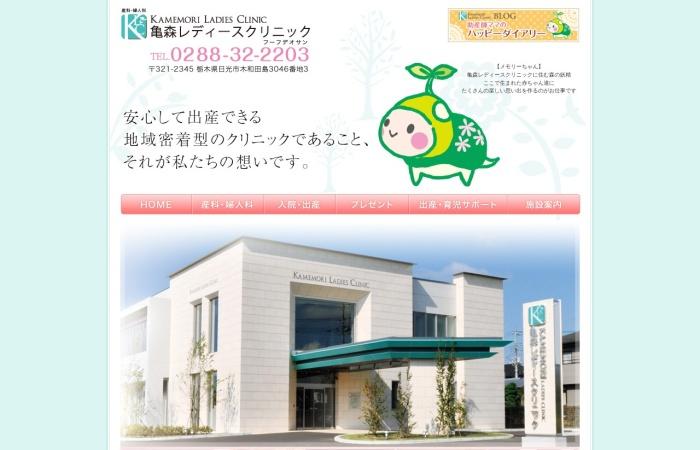 Screenshot of www.kamemori.jp