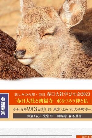 Screenshot of www.kasugataisha.or.jp