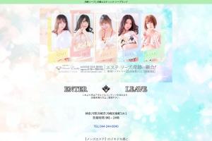 Screenshot of www.kawasaki-soap.net