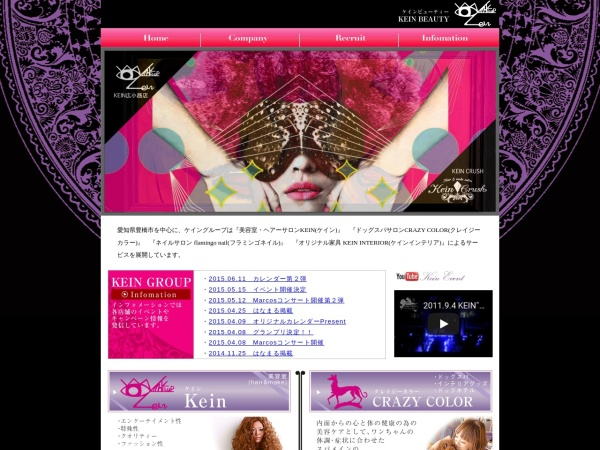 Screenshot of www.kein-group.com