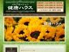 Screenshot of www.kenkohouse.eev.jp