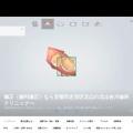 Screenshot of www.kitayamayoshikawashika.com