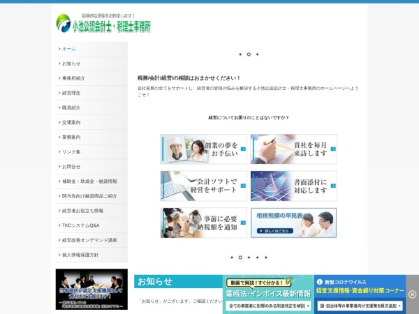 Screenshot of www.koike-cpatax.com