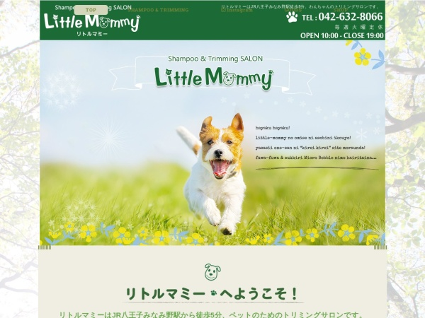 Screenshot of www.little-mommy.com