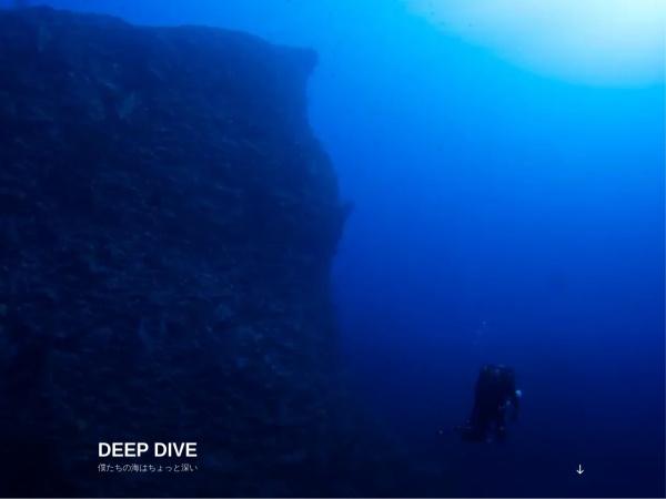 http://www.loco.jp