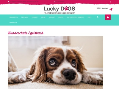 lucky-dogs-hundeschule.de