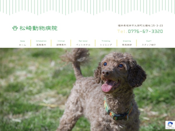Screenshot of www.matsuzaki-ah.co.jp