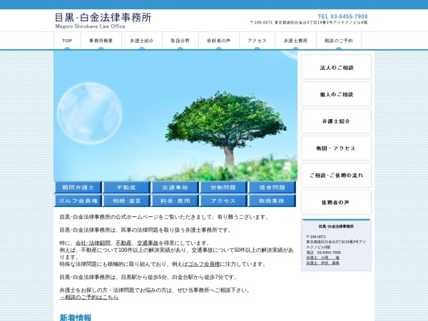 Screenshot of www.meguro-law.com