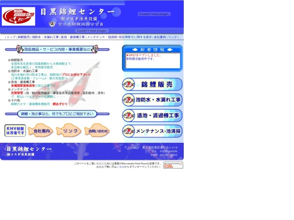 Screenshot of www.meguro-nishikigoi.com