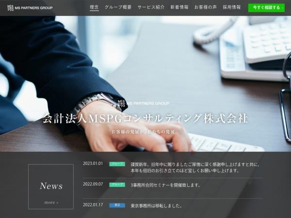 Screenshot of www.mspartnersgroup.org