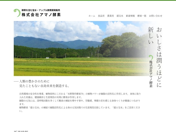 Screenshot of www.n-takaramizu.com