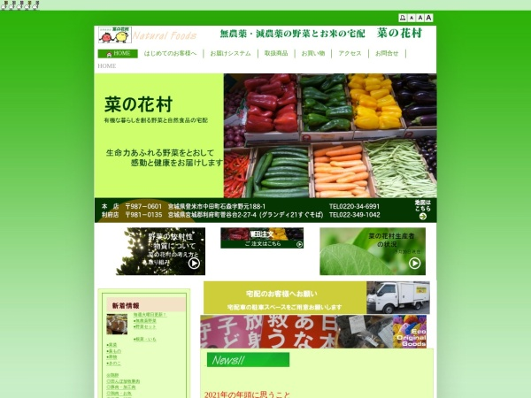 Screenshot of www.nano87.com
