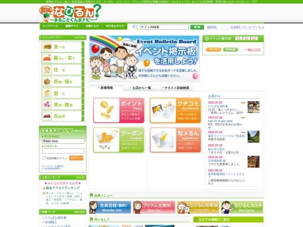 Screenshot of www.navirun.com