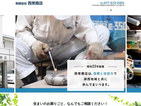 Screenshot of www.nishitsune.com