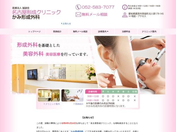 Screenshot of www.nkclinic.net