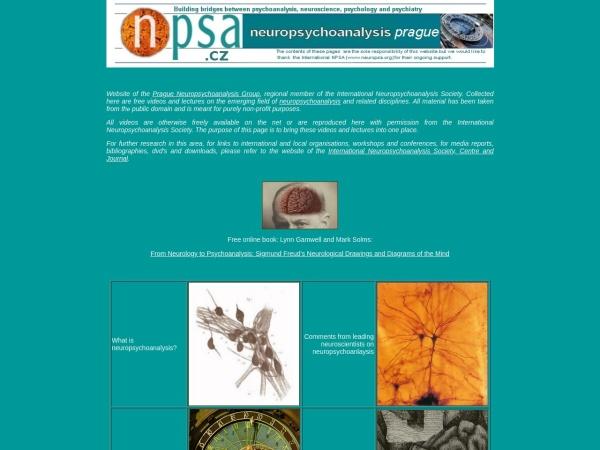 Screenshot of www.npsa.cz