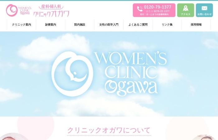 Screenshot of www.ogawa.or.jp