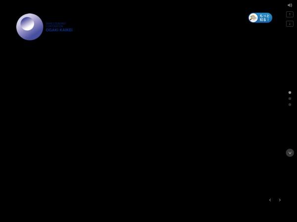 Screenshot of www.oogakikaikei.jp