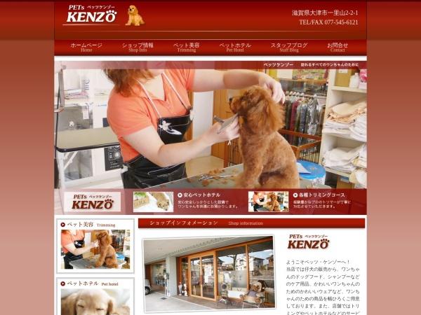 Screenshot of www.p-kenzo.info