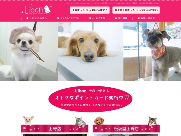 Screenshot of www.p-libon.com
