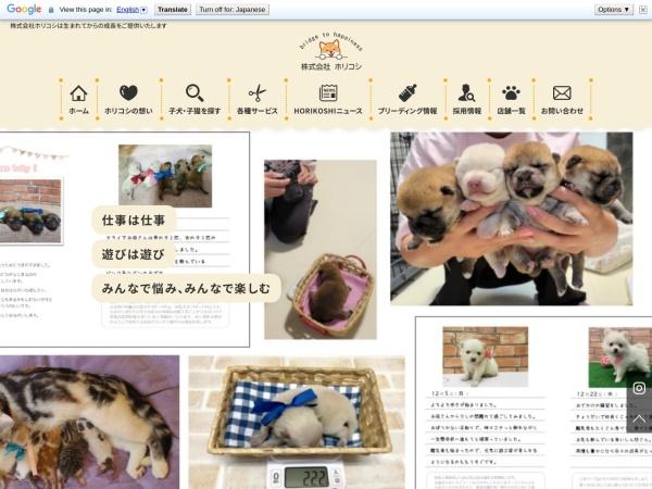 Screenshot of www.pet-h.com