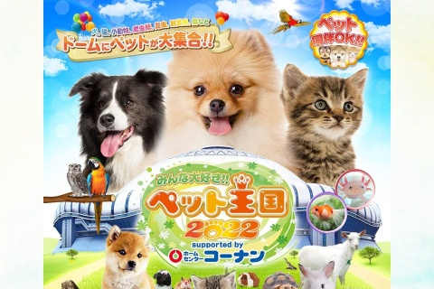 Screenshot of www.pet-oukoku.jp