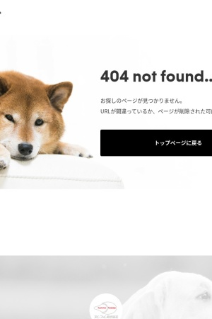 Screenshot of www.petbox.co.jp