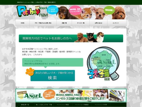 Screenshot of www.petshop.bz