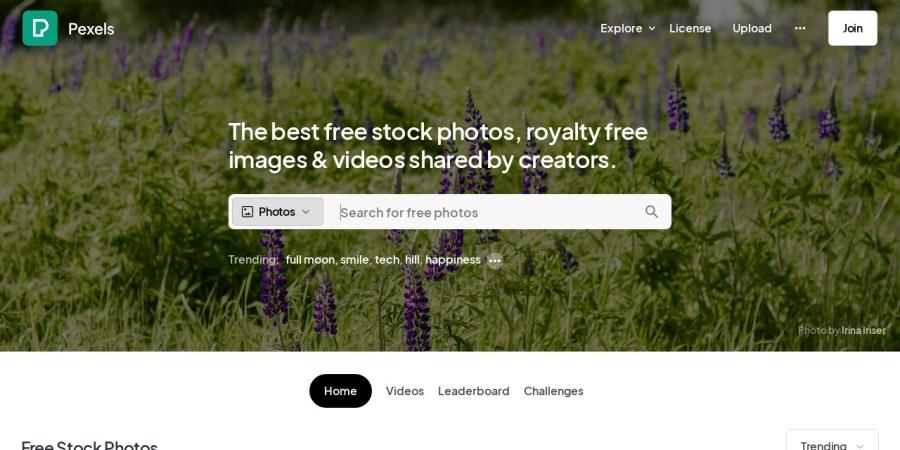 Screenshot of www.pexels.com